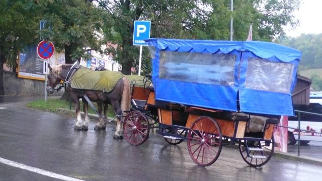 Taxi kočija do dvorca Karlštejn