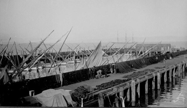 SAN FRANCISCO FELUCCAS FISHING WHARF 1891-RIBARSKI BRODOVI TIPA FELUCCAS U RIBARSKOJ LUCI SAN FRANCISCO