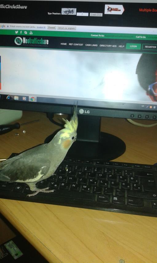 Online job ..My friend help me in my work