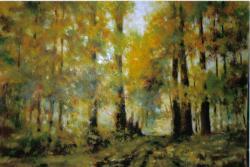 Akvareli portreti i ulja na platnu Mladen eri
