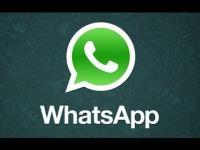Phone:+38761 905 088